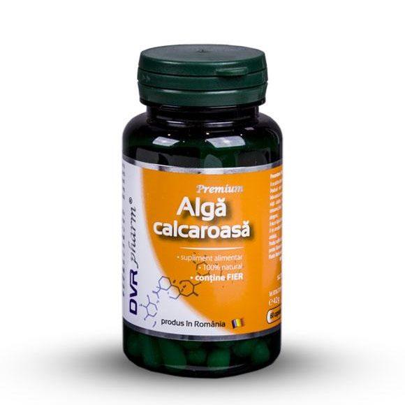 Alga-Calcaroasa-calciu-fier