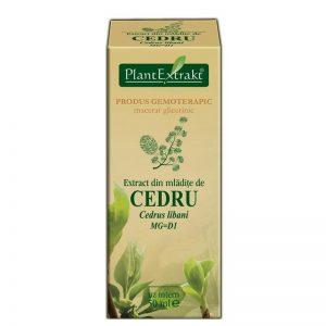 CEDRUS-LIBANI-(CEDRU)50ml-PLANTMED