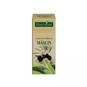 OLEA-EUROPAEA-(MASLIN)-50ml-PLANTMED