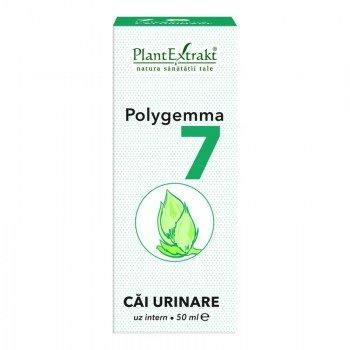POLYGEMMA-7-(CAI-URINARE)-50ml-PLANTMED