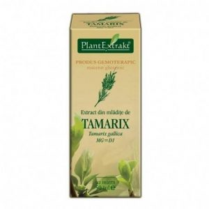 TAMARIX-GALLICA-(TAMARIX)-50ml-PLANTMED
